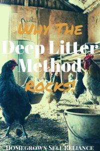 "The Deep Litter Method for chickens is the ""lazy way"" of bedding for your chickens. Read this post to find out what it is, and why it's awesome!"
