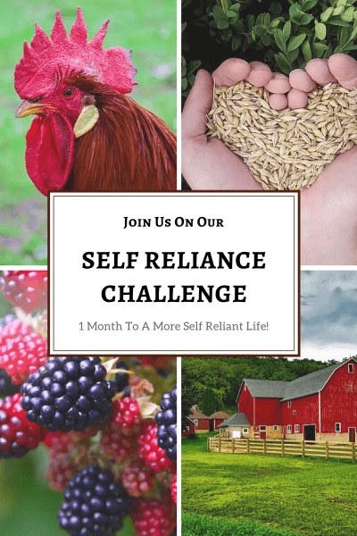 Join us on our self reliance challenge!