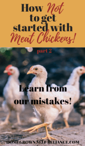 Learn from our mistakes! Read this post (part 2) on how NOT to get started with meat chickens, before you decide to raise them yourself!
