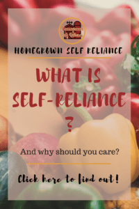 What is self-reliance? And why should you care? Read this post to find out what self reliance is, why it's important, and how you can be more self reliant.