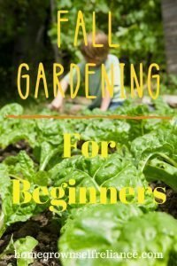 The fall garden is every avid gardener's last hurrah to grow more food, and to make the soil better. Read here to find out what crops you can plant in the fall and still get a harvest! #fallgardening #gardening #homesteading #selfreliance