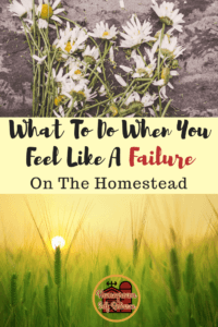 What to do when you feel like a FAILURE on the Homestead - turning homestead fails into homestead wins! It can be very discouraging when it feels like nothing is going your way on your homestead. Here are some ways to overcome that feeling.