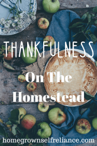 It's Thanksgiving! What are you thankful for? This is a loop post that I made with some of my blogger friends, all about being thankful. Check it out, and spread the love! #thanksgiving #thankful #givethanks #homesteading