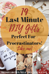 Are you out of time to do Christmas shopping? Check out these great 19 last minute DIY gifts, perfect for procrastinators!