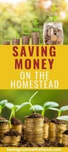 Do you want to homestead, but think it costs too much money? Here are my best tips for saving money on the homestead. #homesteadbudget #savingmoney