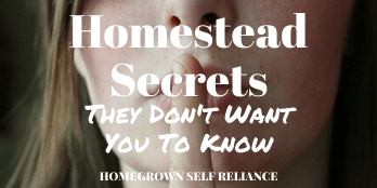 Homestead secrets