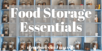 Food Storage Essentials