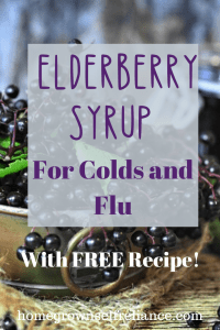 Elderberry syrup is an amazing, easy DIY herbal medicine that anyone can make! Read here all about it, and get my free recipe! #elderberrysyrup #diyhealth #foraging
