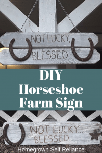 Do you like to make DIY gifts? They are so much more thoughtful and personalized than those bought at the store. Here, you can read about how to make a DIY farm sign with rusty horseshoes! #diygifts #giftsfromthehomestead