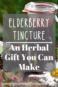 Have you ever made an elderberry tincture? Find out here how easy it is, and give as a gift! Part of the Gifts From The Homestead collaboration. #herbal #elderberry #diyhealth #diygifts