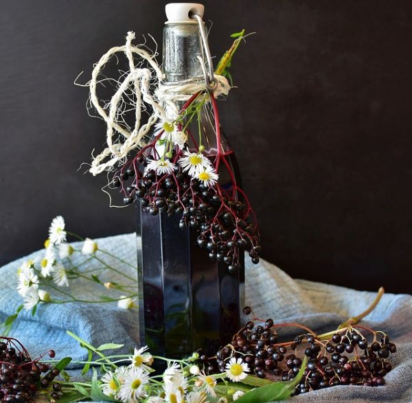 Elderberry tincture in a bottle