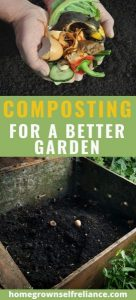 Composting is a cheap way to amend your garden soil. If you need to build your soil so you can have the best garden soil, why not try composting? #compost #gardening