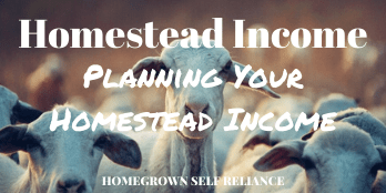 Homestead Income - Planning Your Homestead Income