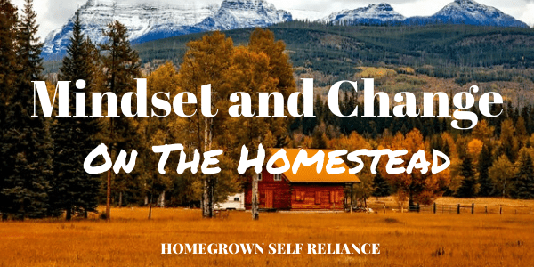 Mindset and change on the homestead
