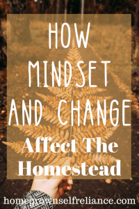 How mindset and change affect the homestead