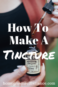 Making a tincture is an easy way to make your own DIY medicine. Find out the basics of tincture making here! #herbal #diyhealth