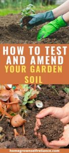 Do you want to have your best garden ever? You need to build your soil! Follow these tips on how to test and amend your soil for a great garden. #gardening #vegetablegardening