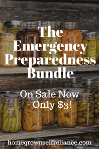 Is your family prepared for emergencies? Do you want to make sure you are more prepared for whatever life might throw at you? Then you NEED The Emergency Preparedness Bundle! It's great for people wanting to dive into being prepared for life's uncertainties. Get your copy today - it's on sale! #preparedness #prepping #emergencyprep