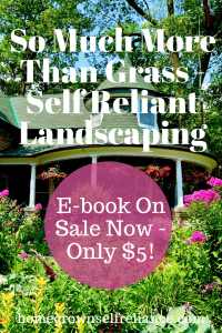 Do you want to try your hand at edible landscaping, but feel overwhelmed? This e-book is just for you, and it's on sale right now! Learn the best way to turn your yard into a garden oasis! #ediblelandscaping #selfreliantlandscaping