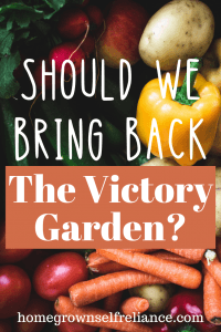 Is it time for Victory Gardens to make a comeback? Victory Gardens were a great morale booster that got millions of people to start growing their own food. Bring them back today! #gardening #victorygarden #selfreliance