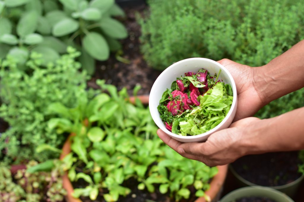 Container gardening for food security