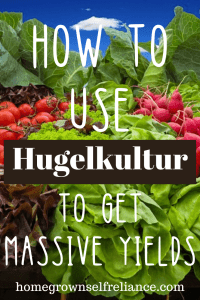 What is hugelkultur, and how can you use it to get massive yields from your garden? Find out the benefits of hugelkultur here. #gardening #hugelkultur #growyourown