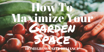 How to maximize your garden space