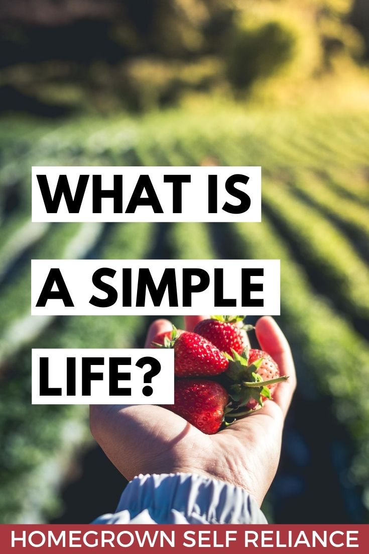 What is a simple life?