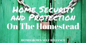 Home security and protection on the homestead