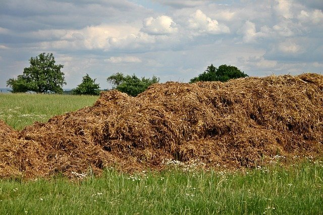 Start a compost pile for your fall garden chores