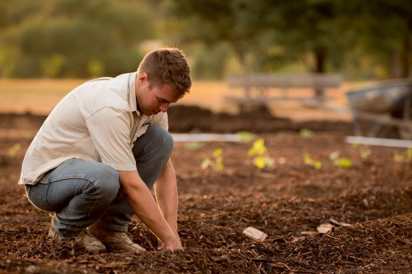 Mulching helps make gardening enjoyable