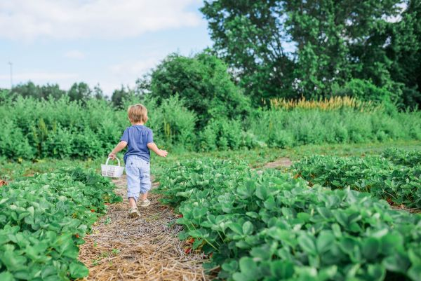 Teach kids that gardening can be enjoyable