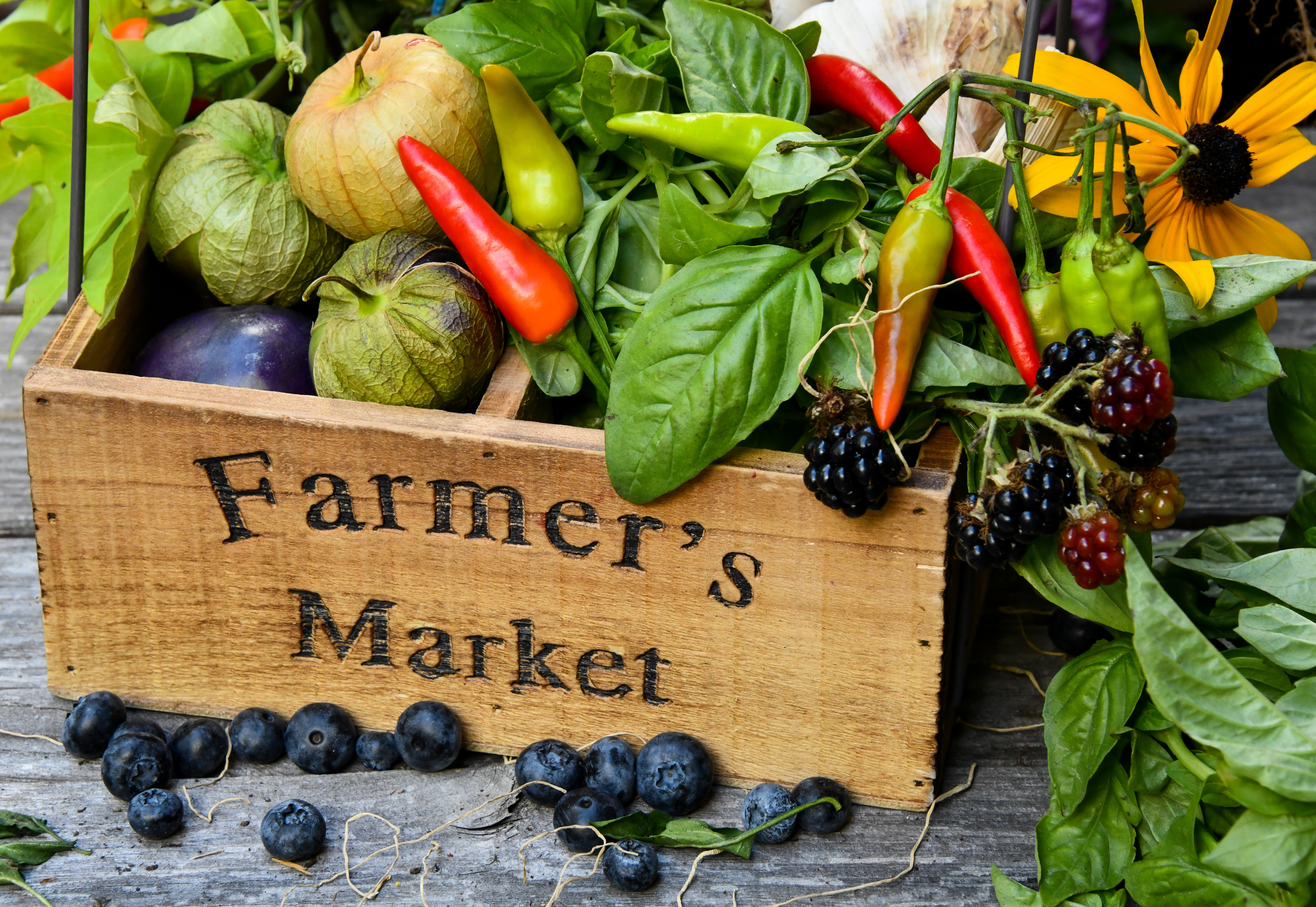Farmers markets are a great way to make up for food shortages in the garden