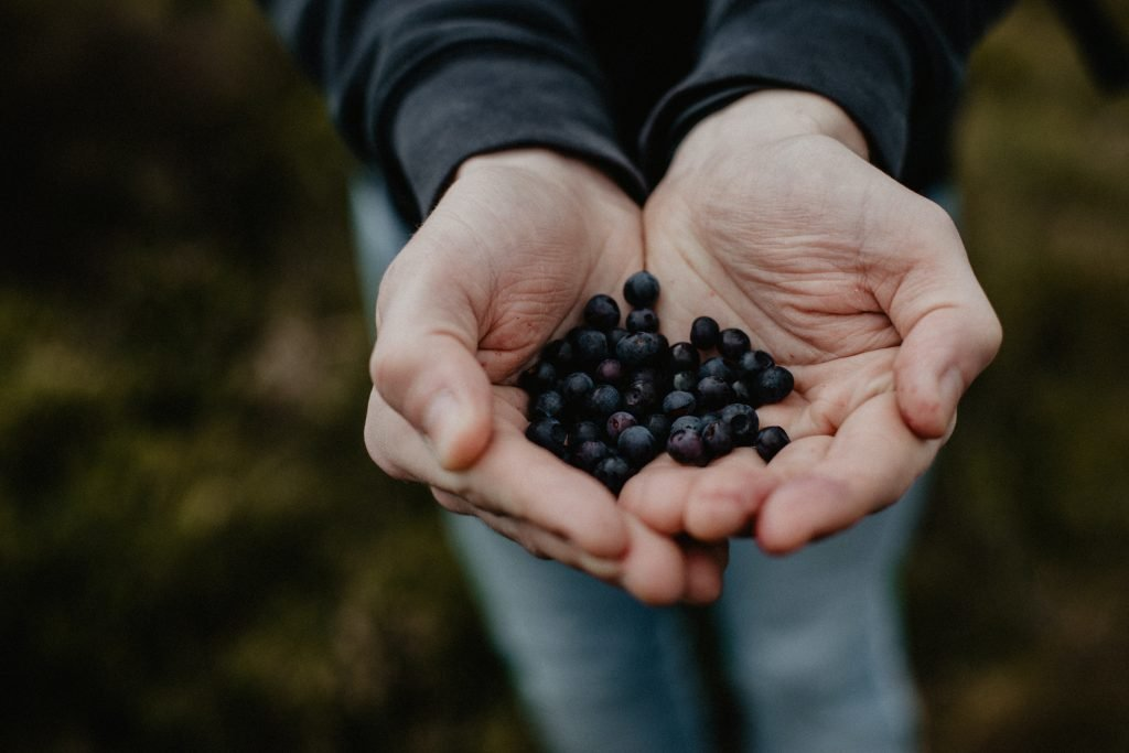 Foraging is great to learn