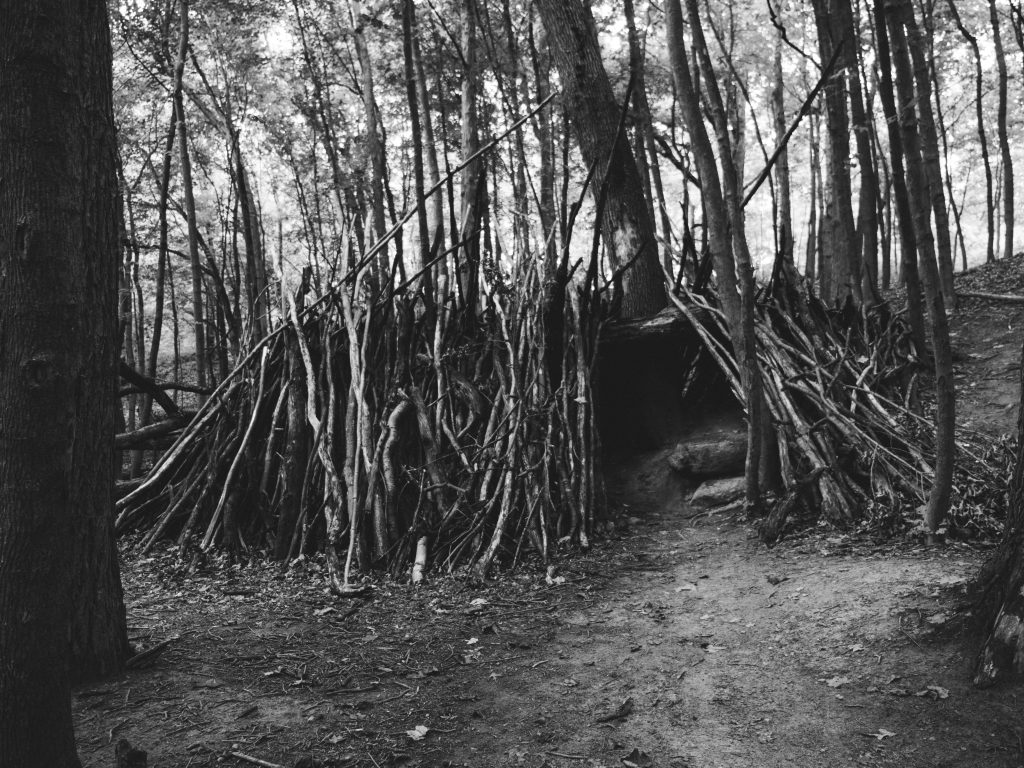 Learn to build shelters in bushcraft camping