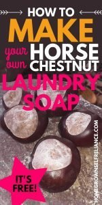 How to make your own horse chestnut laundry soap
