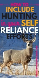 """Picture of deer with """"how to include hunting in your self reliance efforts"""""""