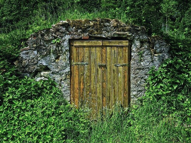 Storing pumpkins in a root cellar is best for longer term storage