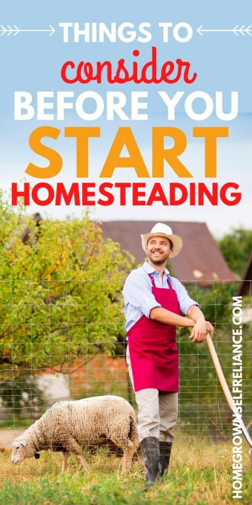 Things to consider before you start homesteading