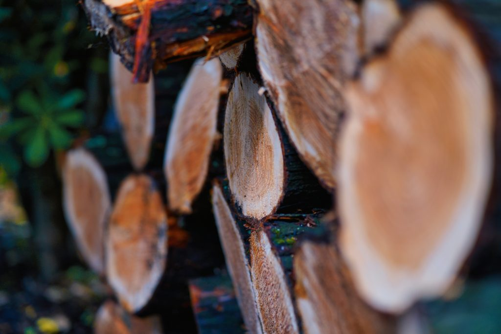 There are many different types of wood to burn for wood heat