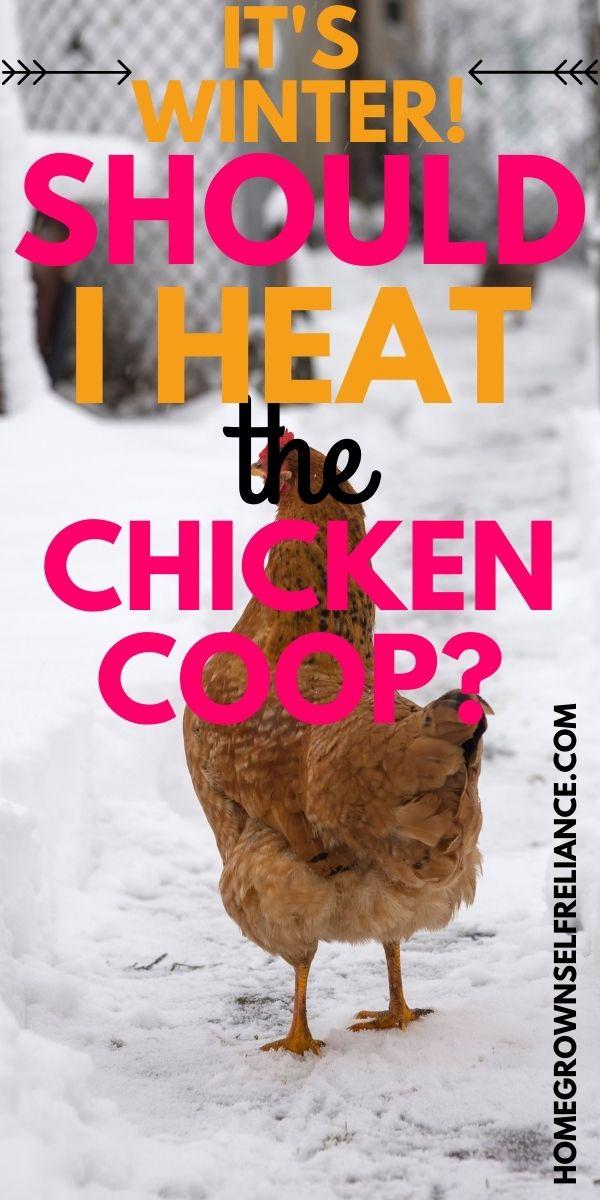 It's winter! Should I heat the chicken coop?