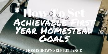 How to set achievable first year homestead goals