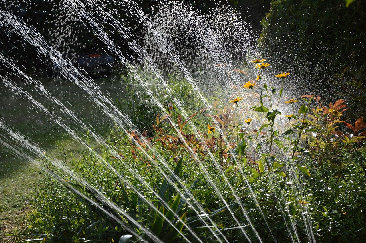 An efficient watering system is important in high desert gardening.