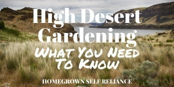 High Desert Gardening - What you need to know