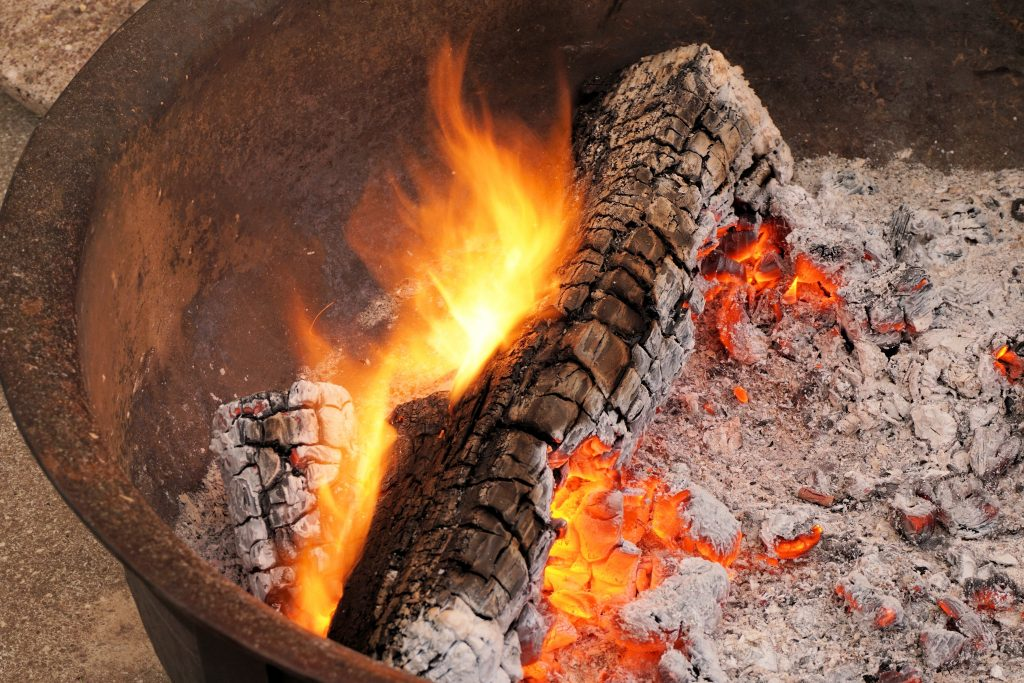 Wood ash is another great thing to add to a chicken dust bath.