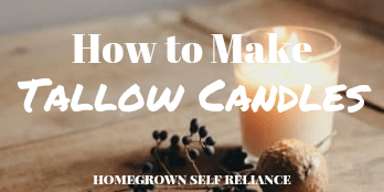 How to make tallow candles