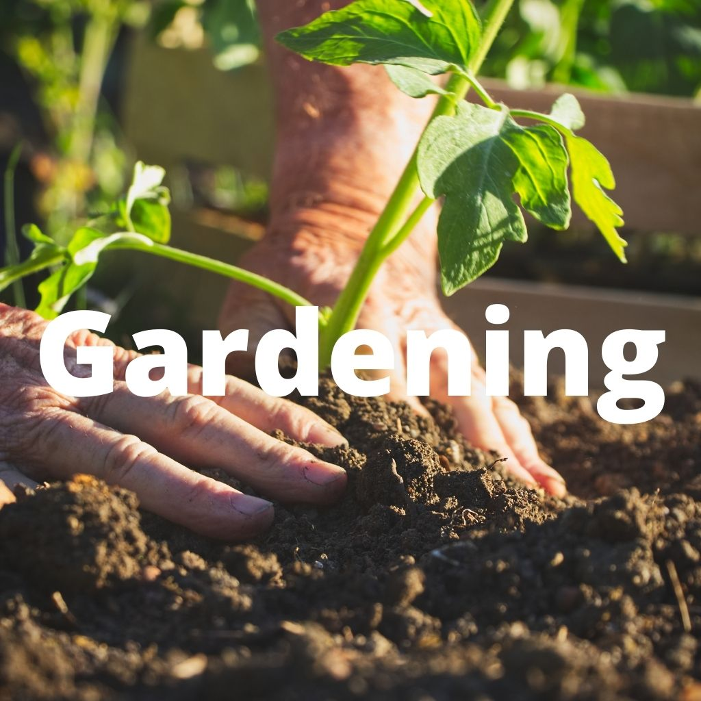 Gardening is a great way of increasing your self reliance