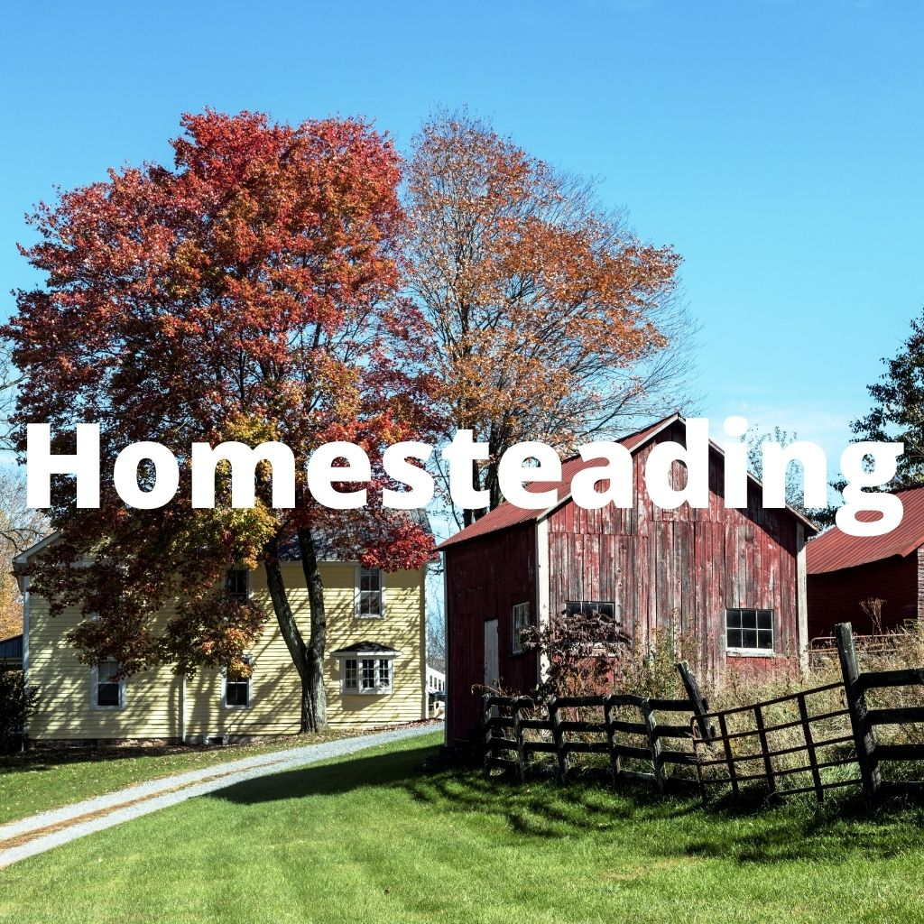 Homesteading is a great way to increase your self reliance