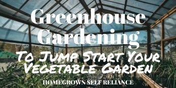 Greenhouse gardening to jump start your vegetable garden